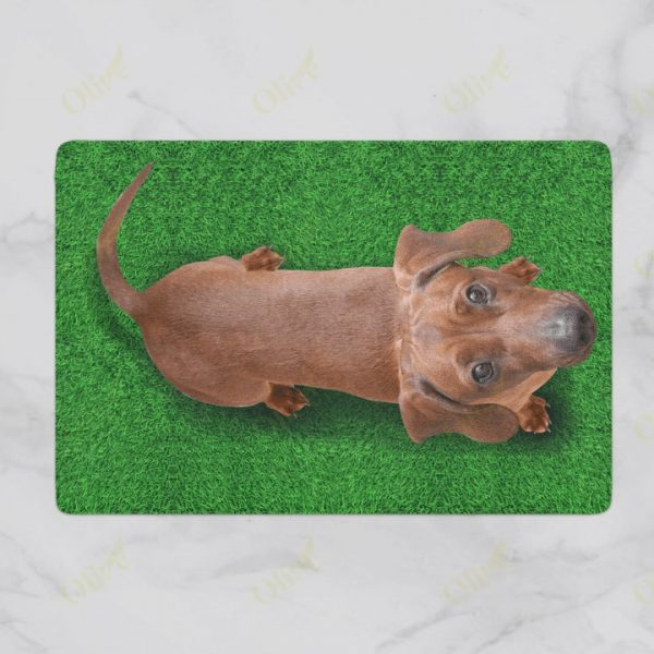 [special edition] dog lover dachshund on grass vintage doormat - maria